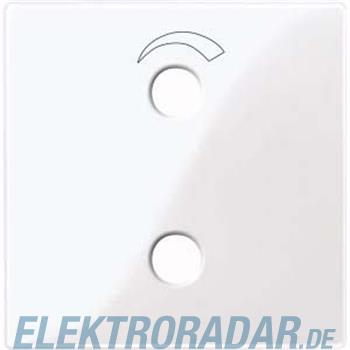 Merten Zentralplatte aws/gl 451925