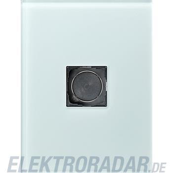 Gira Geräteeinheit 1-fach Glas 138118