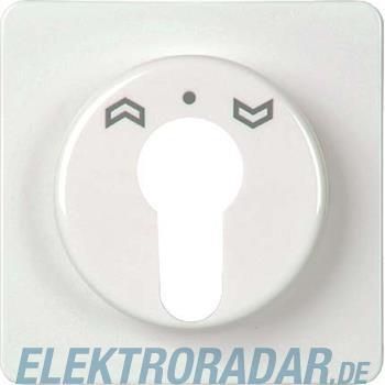 Elso Zentralplatte für Schlüsse 223050