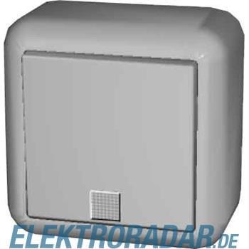 Elso AP-Taster m. N-anschluß, S 382610
