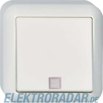 Elso AP-Taster m. N-anschluß, S 382614
