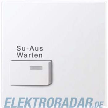 Merten Zentralplatte aws/gl 452325