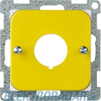 Elso Zentralplatte ge/pws 363066