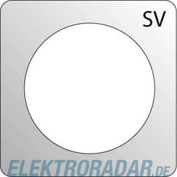 Elso Zentralplatte gn 363107