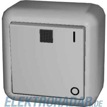 Elso Ausschalter 2-polig beleuc 381212