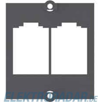 Bachmann Rahmen 2xBTR E-DAT Modul 917.038
