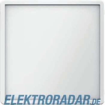 Berker Zentralstück pws 12046089