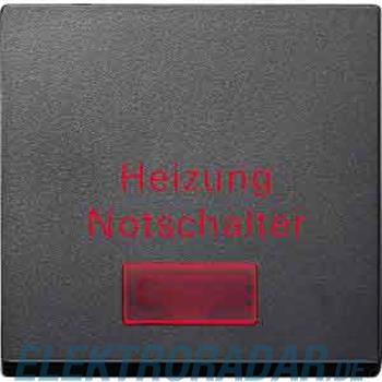 Merten Wippe anth MEG3327-0414
