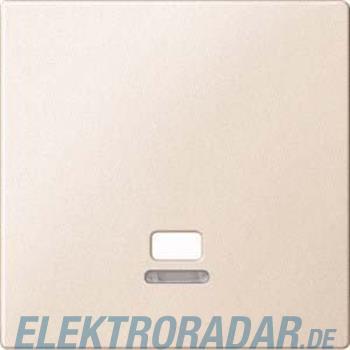 Merten Zentralplatte Zugsch.ws MEG3380-0444