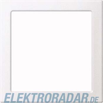 Merten Zentralplatte pws MEG4420-0419
