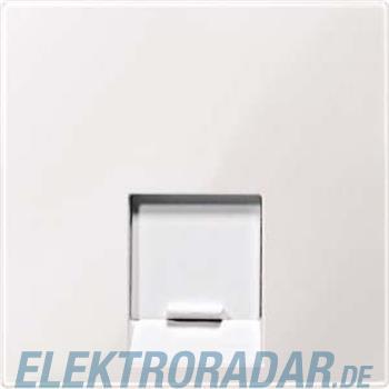Merten Zentralplatte 1f.pws/gl MEG4541-0319