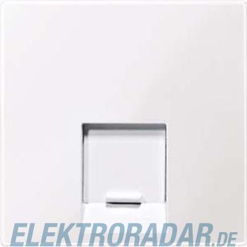Merten Zentralplatte 1f.aws/gl MEG4541-0325