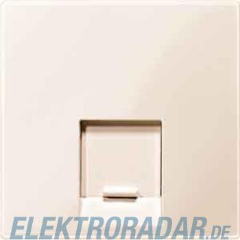 Merten Zentralplatte 1f.ws/gl MEG4541-0344