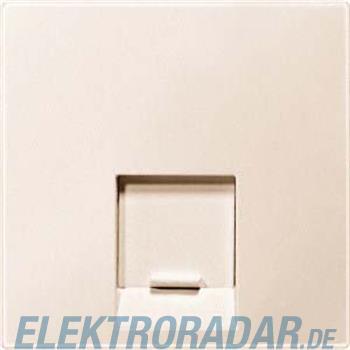 Merten Zentralplatte 1f.ws MEG4541-0444