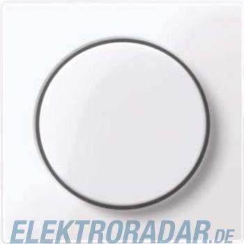 Merten Zentralplatte aws/gl MEG5250-0325