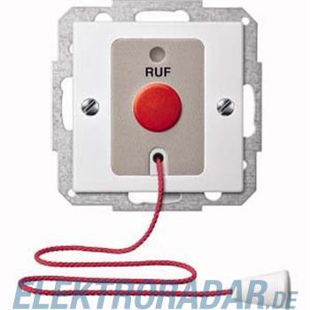 Merten Ruftastereinsatz pws/gl MEG4850-0319