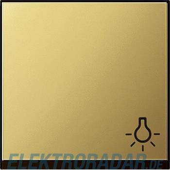 Gira Wippe Kontroll Symbol 0285604
