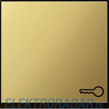 Gira Wippe Symbol Schlüssel ms 0287604
