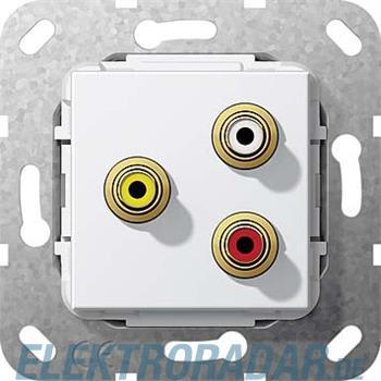 Gira Cinch Audio Composite rws 563803