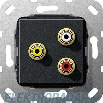 Gira Cinch Audio Composite swma 563810