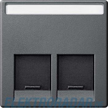 Merten Zentralplatte 2fach MEG4574-0414