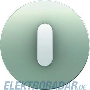 Berker Abdeckplatte mit Knebel 10012074