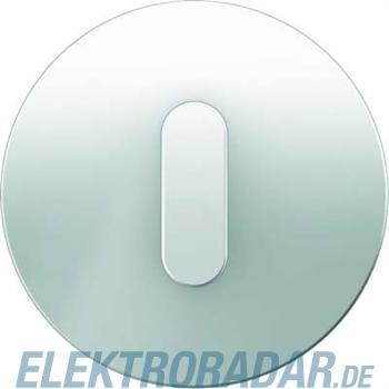 Berker Abdeckplatte mit Knebel 10012083