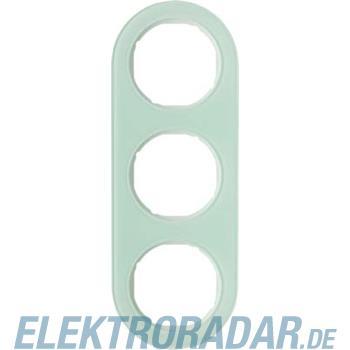 Berker Rahmen Glas/pows 10132009