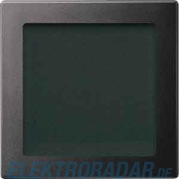 Merten Zentralplatte anth 587014