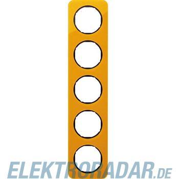 Berker Rahmen 5-fach 10152334