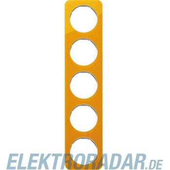 Berker Rahmen 5-fach 10152339