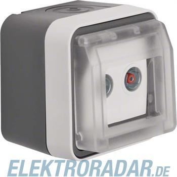 Berker Antennen-Steckdose lgr 12033525