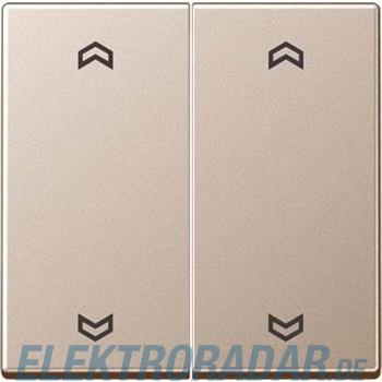 Jung Wippe Symbole Pfeile 2-f A 595 MP CH
