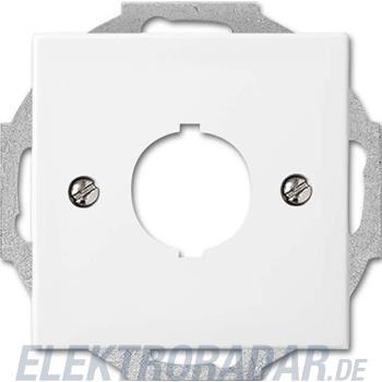 Busch-Jaeger Zentralscheibe alpinws 2534-914