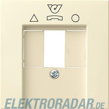 Gira Zentralplatte cws-gl 026001
