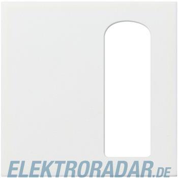 Gira Zentralplatte rws-gl 116603