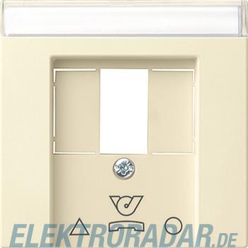 Gira Zentralplatte cws-gl 086001