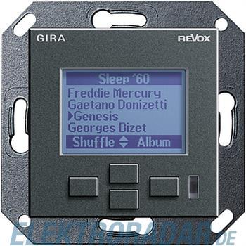 Gira Displayeinheit anth 053928