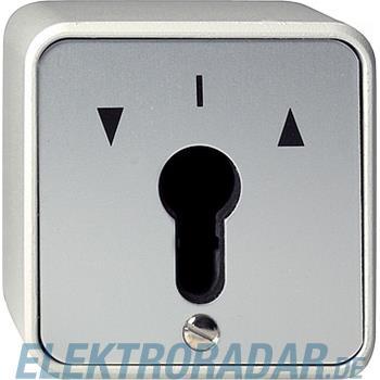 Gira Schlüsselschalter-Einsatz 014430