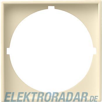 Gira Zentralplatte cws-gl 028101