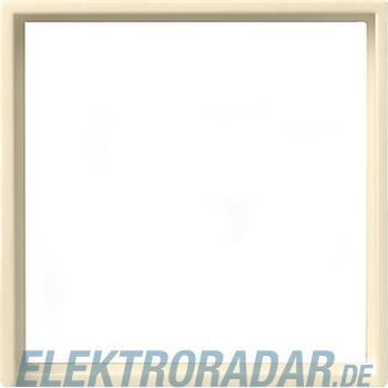 Gira Zentralplatte cws-gl 028201