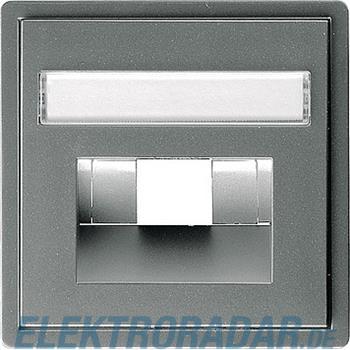 Gira Zentralplatte UAE/IAE eds 028420