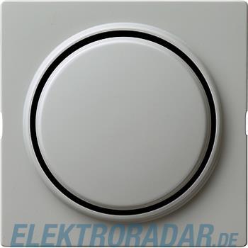 Gira Wippe Wechselsch. gr 029642