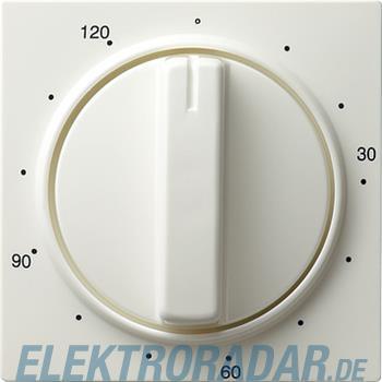 Gira Zentralplatte Zeitsch. rws 064240