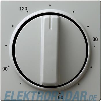 Gira Zentralplatte Zeitsch. gr 064242