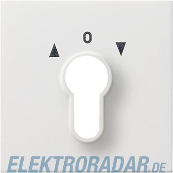Gira Zentralplatte rws-gl 0664112