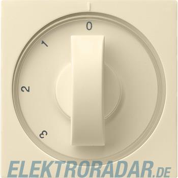 Gira Zentralplatte cws-gl 066901