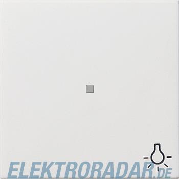 Gira Zentralplatte rws-gl 0674112