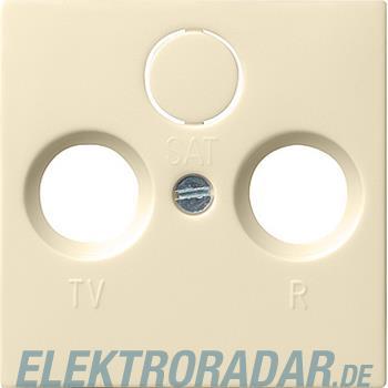 Gira Zentralplatte cws-gl 086901