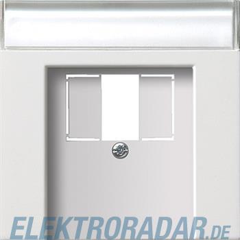 Gira Zentralplatte TAE rws-gl 0876112
